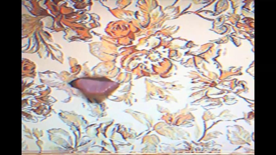 Jonnie Prey, Ornate Pus Mall, 2020. Digital Video Still.