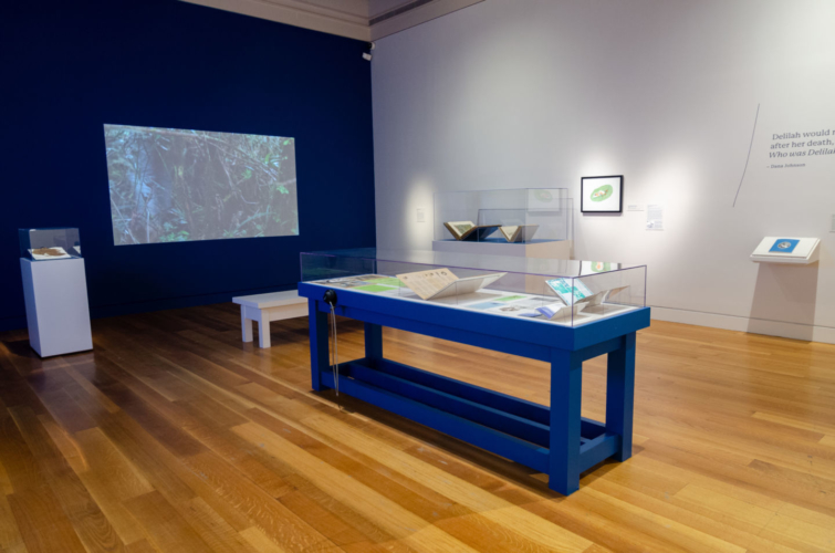 Installation view, Beside the Edge of the World, The Huntington, November 9, 2019 - February 24, 2020.